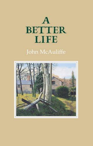 A Better Life - John McAuliffe (ebook)