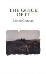 The Quick of It - Eamon Grennan